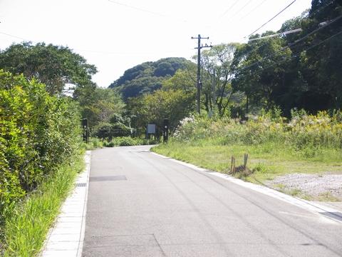 青龍寺への道